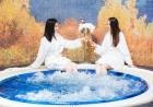 Делник в Шипково! Нощувка на човек със закуска +  минерален басейн и релакс пакет в Бутиков хотел Шипково край Троян, снимка 4