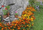 Декември в Еко селище, Омая! Нощувка със закуска за двама или четирима в къщичка направена от камък, глина и дърво, снимка 34