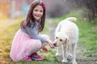 Детска фотосесия с времетраене 60 мин. от професионален фотограф Чавдар Арсов, София, снимка 2