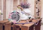Фотосесия за 8-ми март с 8 кадъра от фотографско ателие Bella's Photography, София, снимка 3