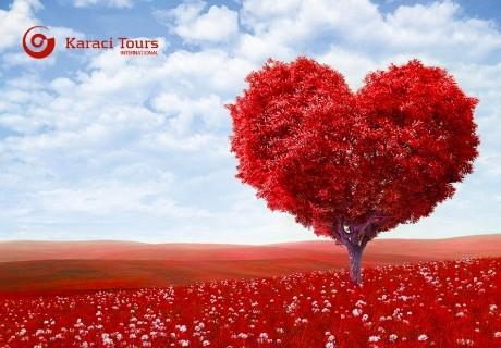 Екскурзия за Свети Валентин до Истанбул! Транспорт + 2 нощувки на човек със закуски + бонус Нощна обиколка на Истанбул от Караджъ Турс