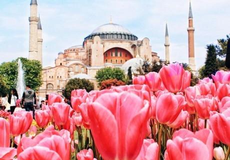 Екскурзия за фестивалa на лалето в Истанбул! Транспорт + 2 нощувки на човек със закуски +  възможност за посещение на WATERGARDEN ISTANBUL от Еко Тур