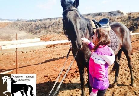 Конна езда и обучение в грижа за конете - 60 мин. забавление за малки и големи от конна база Ласкар, София