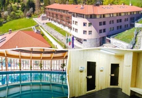 3 или 5 нощувки на човек със закуски и вечери + закрит плувен басейн от хотел Борика****, Чепеларе