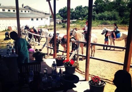 Един час конна езда или обучение от Конна база, с. Иваняне, гр. Банкя
