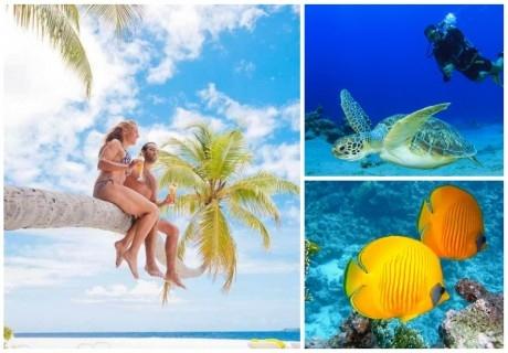Почивка в ARENA BEACH HOTEL 4*, Маафуши, Малдиви. Самолетен билет от София + 7 нощувки на човек със закуски и вечери + екскурзия-шнорхелинг + нощен риболов!