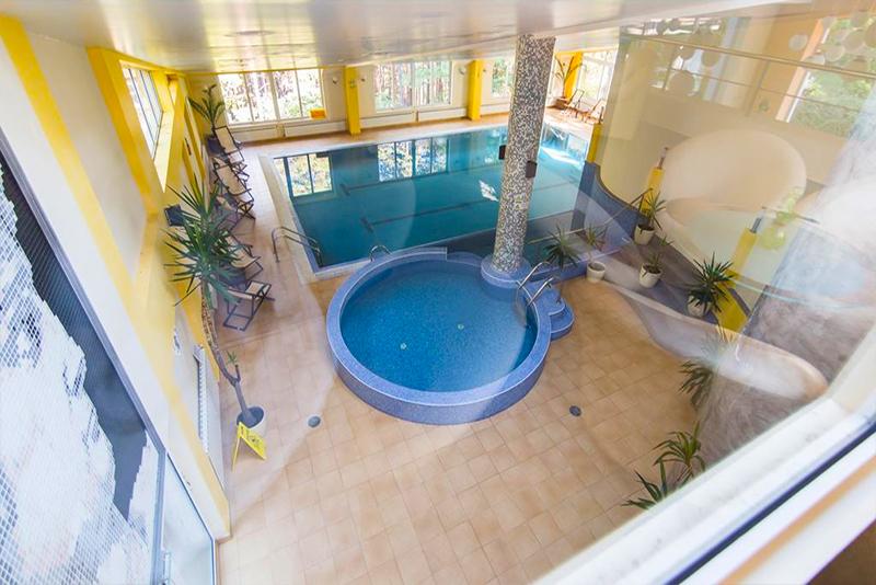 Нощувка на човек със закуска + басейн и релакс зона в хотел Борова гора, Пирдоп, снимка 6