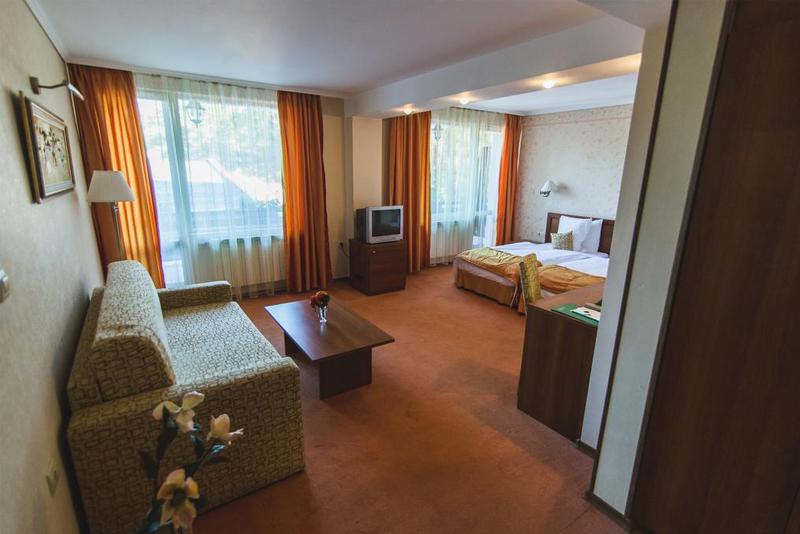 Нощувка на човек със закуска + басейн и релакс зона в хотел Борова гора, Пирдоп, снимка 8