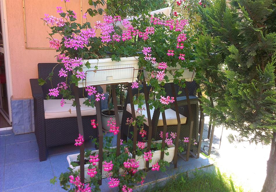 Къща за гости Иви, Равда, снимка 4