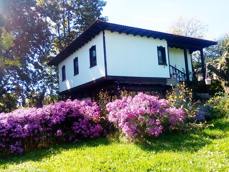Къща за гости Възрожденска, с. Влайчовци