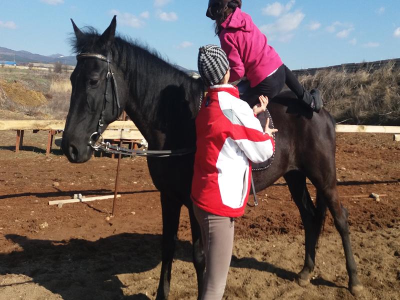 Конна езда и обучение в грижа за конете - 60 мин. забавление за малки и големи от конна база Ласкар, София, снимка 5