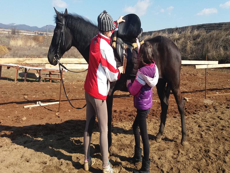 Конна езда и обучение в грижа за конете - 60 мин. забавление за малки и големи от конна база Ласкар, София, снимка 2