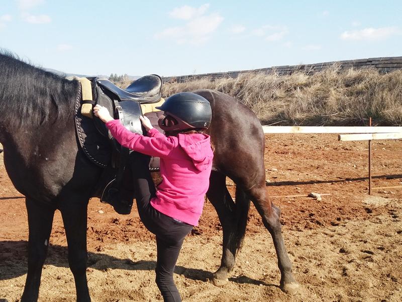 Конна езда и обучение в грижа за конете - 60 мин. забавление за малки и големи от конна база Ласкар, София, снимка 4