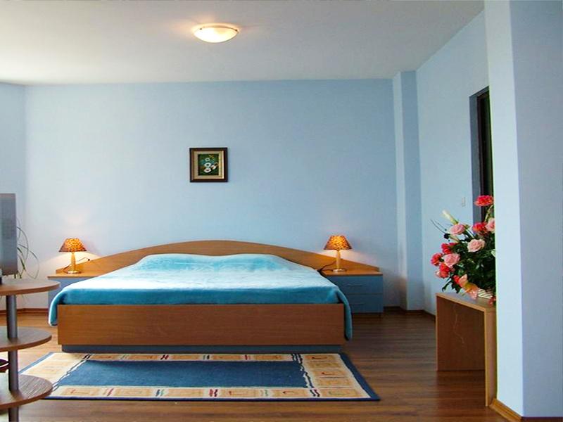 Хотел Емали, Банкя, снимка 7