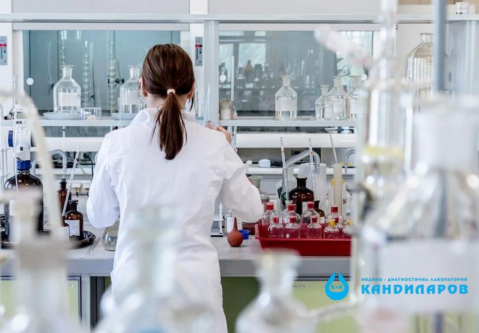 Изследване на Пълна кръвна картина с ДКК, СУЕ и CRP от Лаборатории Кандиларов, снимка 2