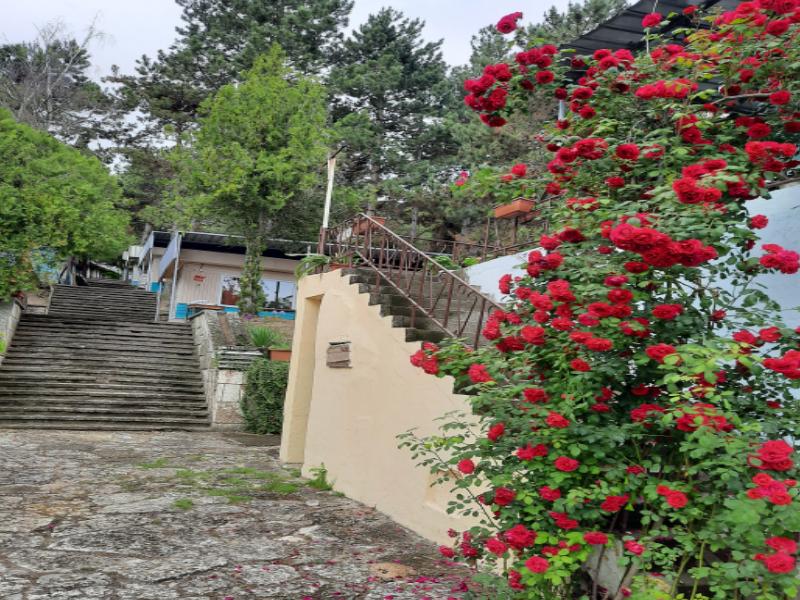 Нощувка на човек в бунгала Видин, Кранево, снимка 3