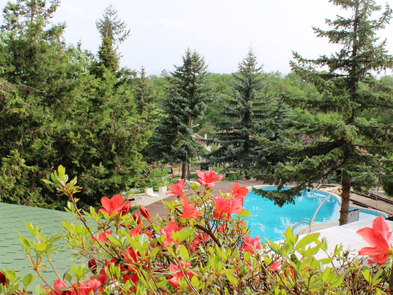 Нощувка със закуска за ДВАМА + външен и вътрешен басейн с гореща минерална вода и сауна от хотел Виталис, Пчелински бани, до Костенец, снимка 16