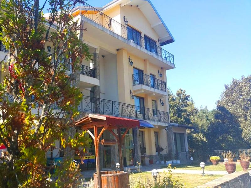 Почивка до Троян! 2 + нощувки на човек със закуски, обеди и вечери + басейн в хотел Виа Траяна, Беклемето, снимка 2