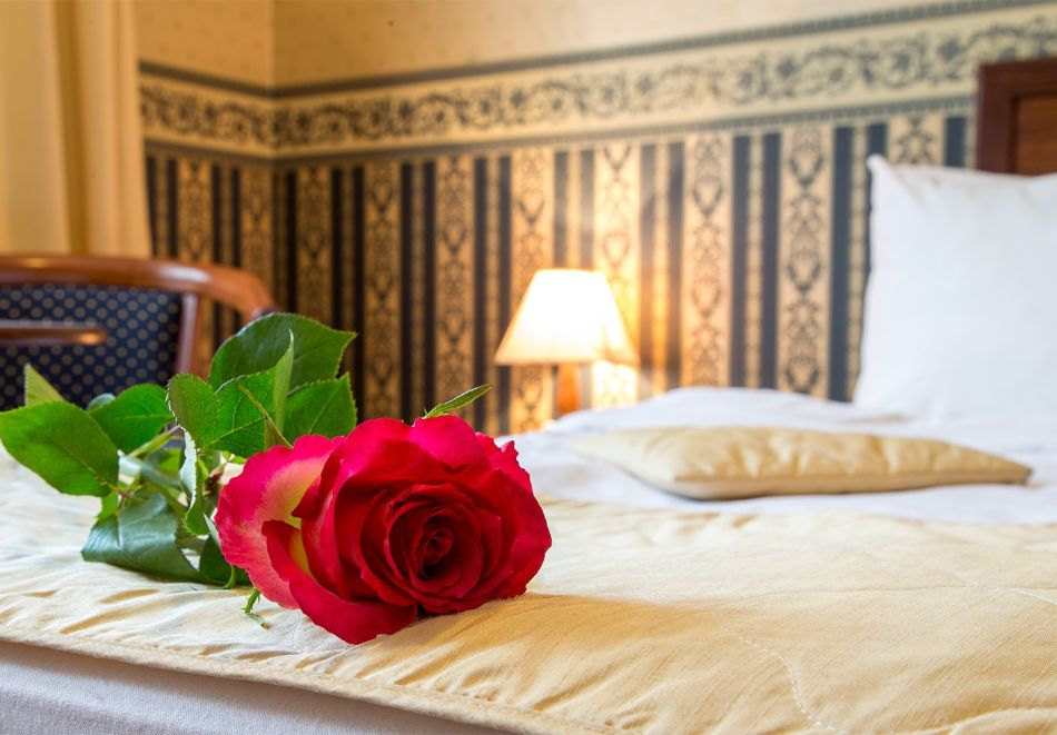 Нощувка на човек със закуска и вечеря + топъл басейн в хотел Шато Монтан, Троян, снимка 3