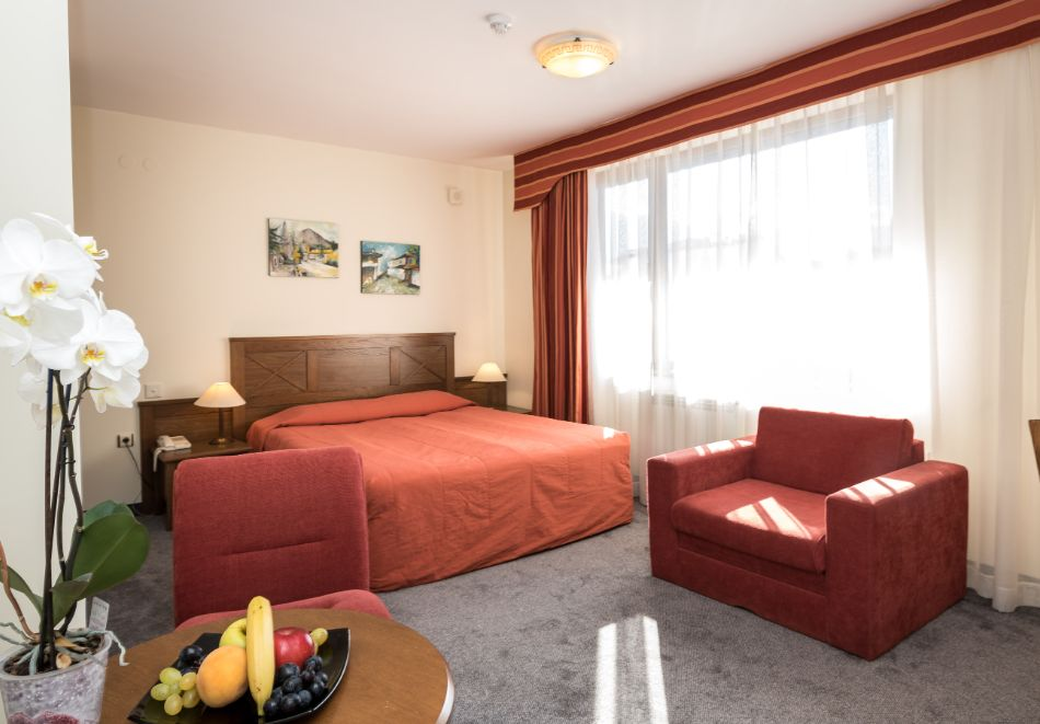 Нова Година в Банско! 3, 4 или 5 нощувки на човек със закуски и вечери, едната празнична + басейн и сауна в хотел Евелина Палас****, снимка 8