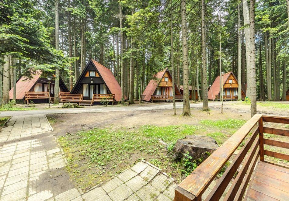 2=3 или 4=5 нощувки в напълно оборудвана къща за до 5 човека във Вилни селища Ягода и Малина, Боровец, снимка 14