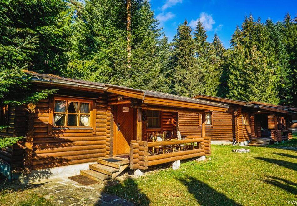2=3 или 4=5 нощувки в напълно оборудвана къща за до 5 човека във Вилни селища Ягода и Малина, Боровец, снимка 11