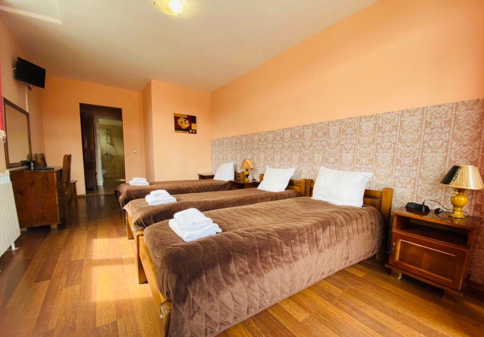 Нощувка за двама със закуска + минерален басейн в семеен хотел Карпе Дием, с. Баня, до Банско, снимка 7