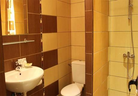 Хотел Дипломат Парк, Луковит, снимка 6