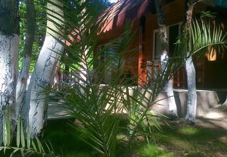5 или 7 нощувки в бунгало за до 6-ма + басейн във Ваканционно селище Кокиче , Приморско, снимка 5