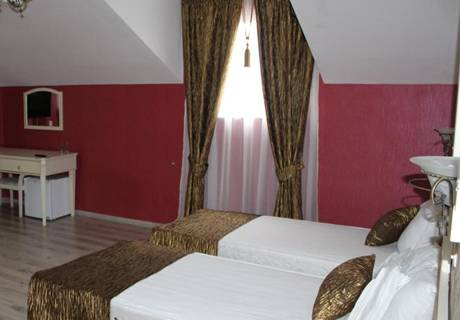 Семеен хотел Вила Париж, Хисаря, снимка 6